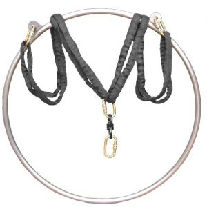the history of lyra hoop