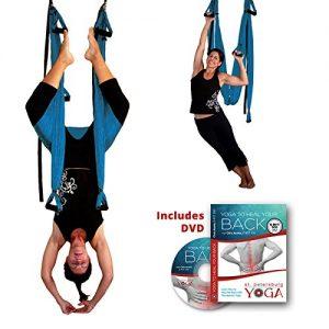 GravoTonics inversion sling for back pain